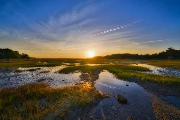 A sunset view of a lowland Florida mangrove
